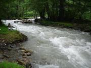 آلوده کنندگان رودخانه کرج به صورت نقدی و کیفری مجازات می شوند