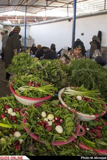 زنان مازندرانی به عنوان يک بازوی قدرتمند در توسعه اقتصادی