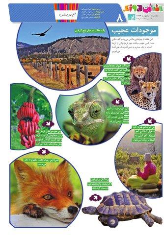 Vij-Kafshdoozak-No.25-New-New.pdf - صفحه 8
