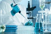 آزمایشگاه مرکزی دانشگاه ایلام در بین آزمایشگاههای برتر کشور قرار دارد