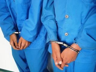 دستگیری سارقان