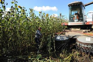 کشاورزی - کراپشده