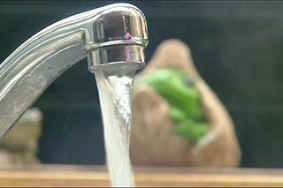 مصرف آب شرب