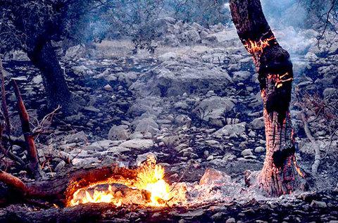 آتش سوزی مانشت