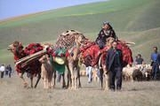 سایه اندازی کرونا بر زندگی عشایر کهگیلویه و بویر احمد