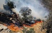 ۹۰ درصد آتش سوزیهای جنگلهای لرستان عمدی است