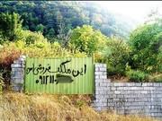 بزرگترین شبکه زمین خواری در استان قزوین شناسایی و منهدم شد
