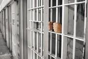 جمعیت زندانیان خراسان شمالی از میانگین کشوری پایین تر است
