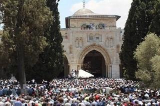 تظاهرات اردنی ها