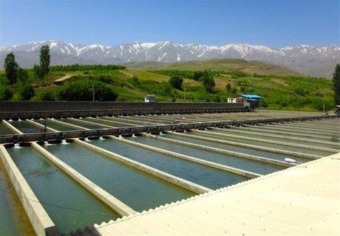 تولیدات آبزی