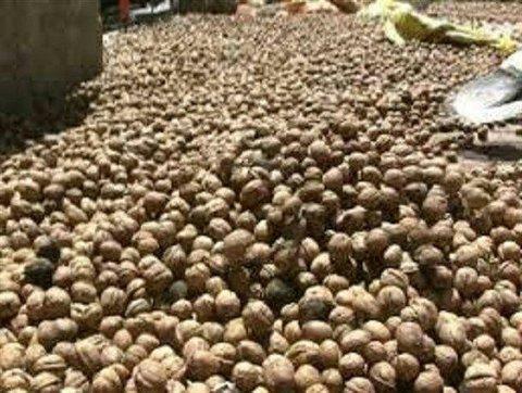 مواد خوراكي قاچاق ميلياردی در خرم آباد