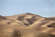 تپه ماهورهای رها شده کانون فرسایش خاک شده است