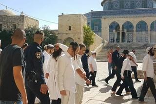 المسجدالاقصى - کراپشده