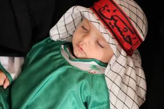 همایش طفل شیرخوارگان حسینی در یاسوج