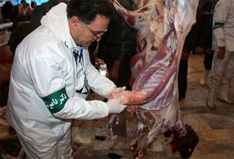 گوشت قربانی
