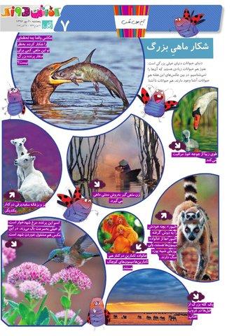 Vij-Kafshdoozak-No-43.pdf - صفحه 7