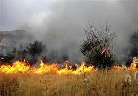 آتش سوزی مراتع شهر بابک