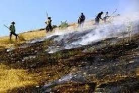 آتش سوزی منابع