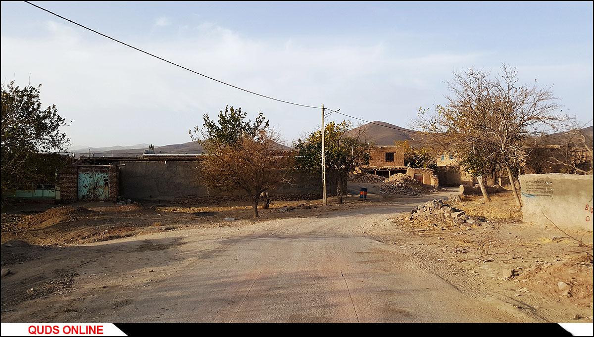 روستای درخت سپیدار