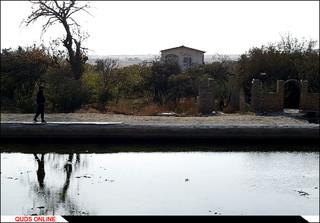 روستای درخت سپیدار/تصاویر