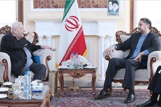امیرعبداللهیان در دیدار با سفیر فلسطین در تهران: