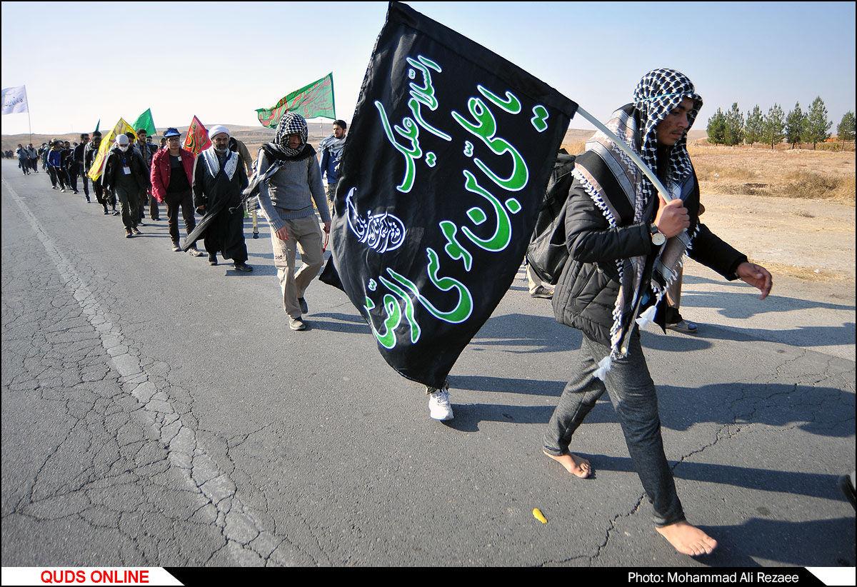 پیاده روی زائران حرم مطهر امام رضا (ع)/گزارش تصویری
