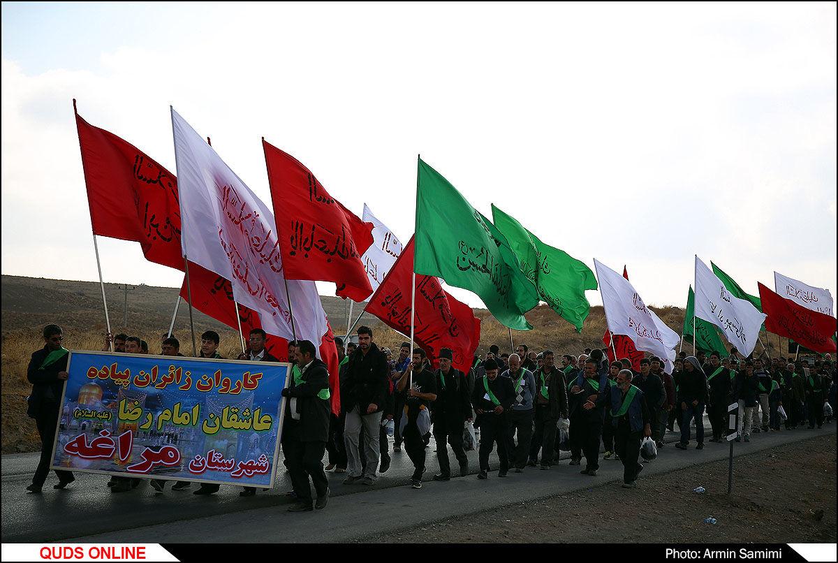 ورود زائران پیاده به حریم رضوی / گزارش تصویری