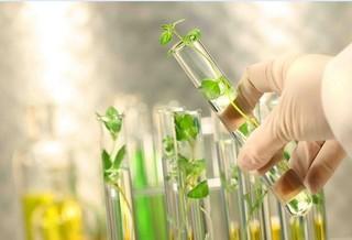 محصولات کشاورزی دانش بنیان