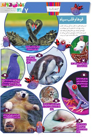 Kafshdoozak-No.47-New.pdf - صفحه 7