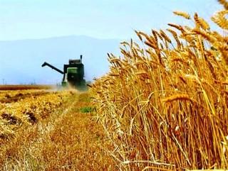 کشاورزی استان کردستان