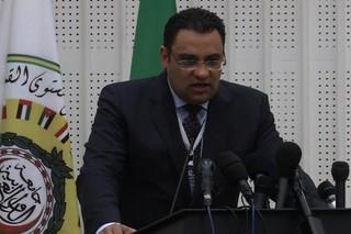 «محمود عفیفی» سخنگوی اتحادیه عرب