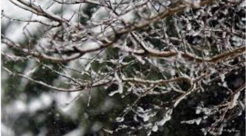 سرما و برف
