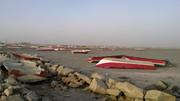 سایه شوم نابودی در کمین اراضی هندیجان خوزستان/ بحرانی که جدی گرفته نمی شود
