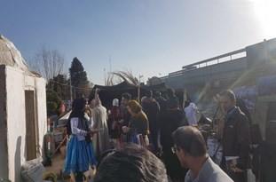 جشنواره سیستان