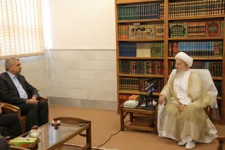 آیت الله مکارم شیرازی در دیدار وزیر نیرو