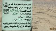 خیرین ۹۵۵ اصله درخت پسته به کمیته امداد جوین اهدا کردند