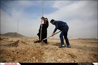 کاشت نهال در ارتفاعات جنوبی مشهد