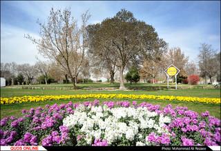 حال و هوای شهر در استقبال از بهار