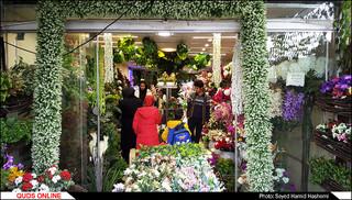 بازار گل مشهد درحال و هوای سال جدید