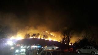 آتش سوزی گیلان_ جنگل
