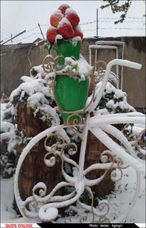 بارش برف در قوچان