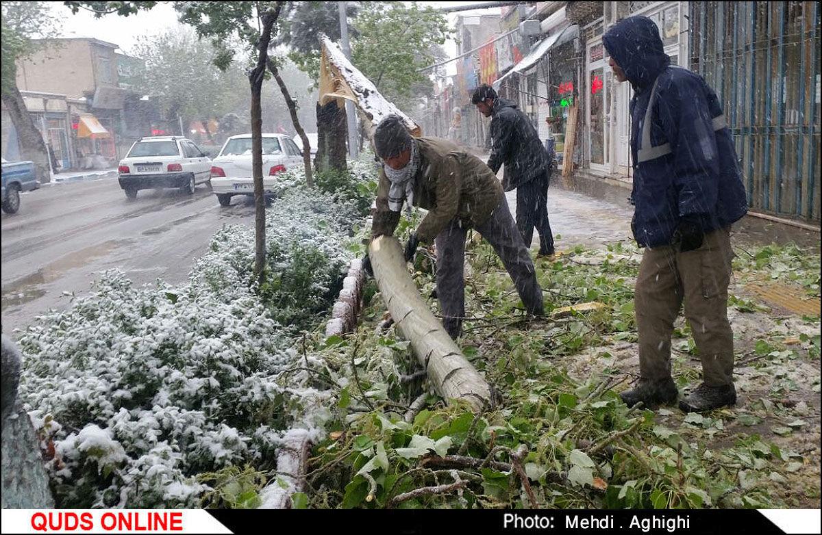 بارش برف در قوچان / گزارش تصویری
