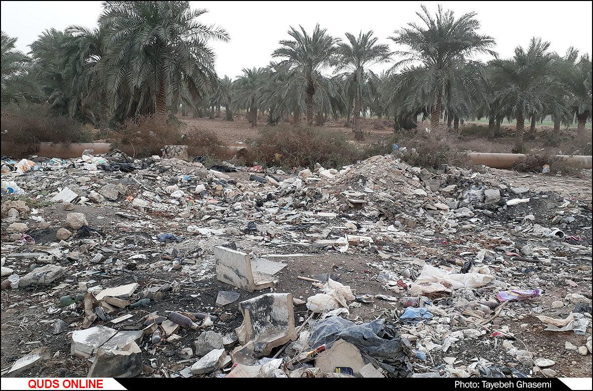 امروز روز زمین پاک است ! / گزارش تصویری