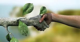 حفظ زیستگاه محیط زیست