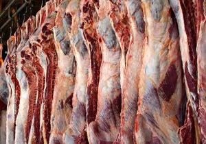 رییس اتحادیه فروشندگان گوشت قرمز مشهد