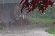 پیشبینی ادامه باران در کشور تا ۳ روز آینده