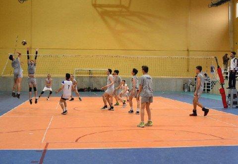 والیبال فردیس
