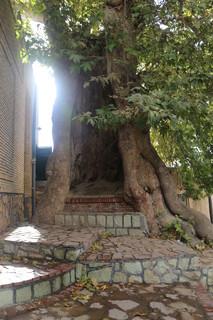 میراث فرهنگی استان مرکزی