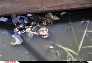 امواج زباله بر ساحل دیلم