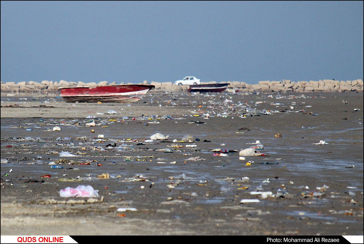 امواج زباله بر ساحل دیلم/گزارش تصویری